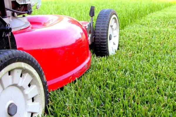 Lawn Pros can meet your residential or commercial lawn mowing Wichita needs.