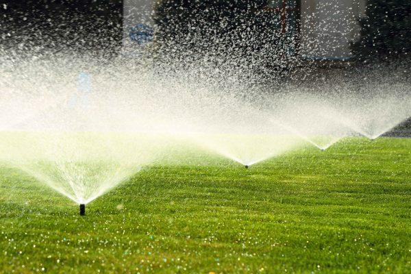 Proper Wichita irrigation will ensure your yard is watered evenly.