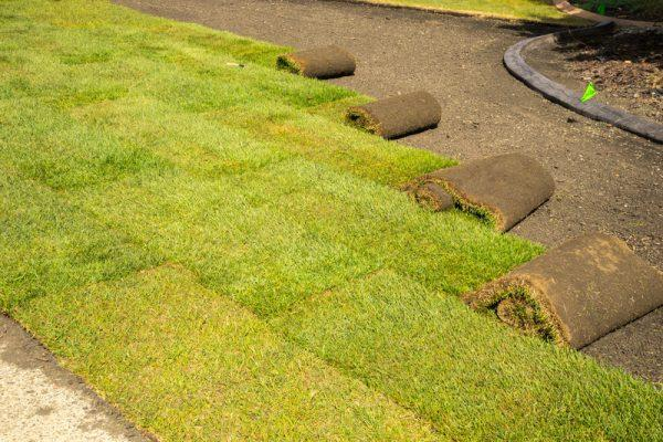 Laying sod is an art and Lawn Pros is experienced with all your Sod Wichita needs.