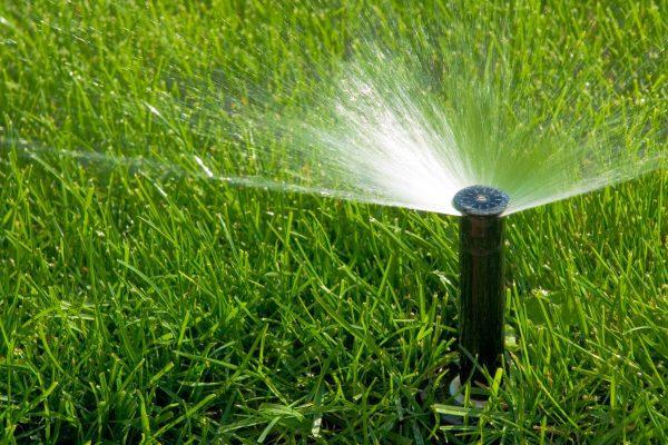 Wichita Irrigation