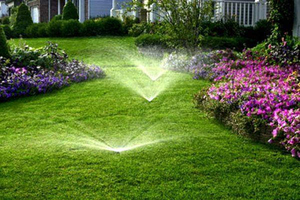 The best Wichita irrigation reaches the entire yard, to ensure all the grass and landscape beds are reached.