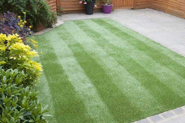 Proper lawn mowing and bed maintenance can make all the difference in the aesthetics of your yard.