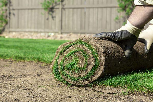 From soil preparation, installation, fertilization and irrigation, Lawn Pros has your sod Wichita needs covered.